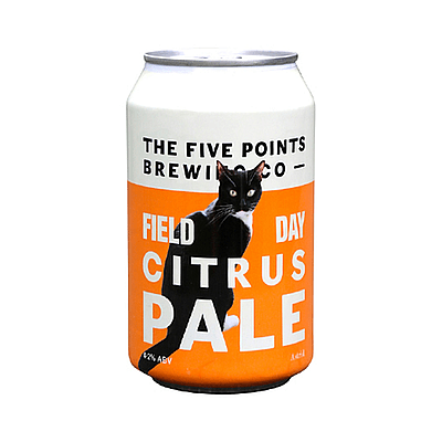 Field Day Citrus Pale by Five Points