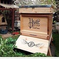 Hiver image thumbnail
