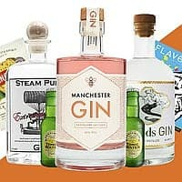 Ultimate Gin Hamper by Flavourly
